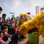 lion dance performance at the park