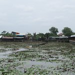 ภาพถ่ายของ Thung Bua Daeng Floating Market