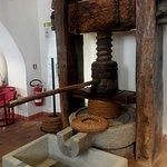 MOO Museo dell'Olivo e dell'Olio의 사진