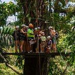 The Terraventuras Canopy Ziplining Tour in Puerto Viejo, Costa Rica