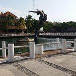 Parque con delfines y otras especies