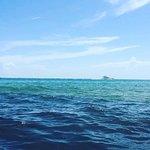 Bilde fra Bal Harbour Beach