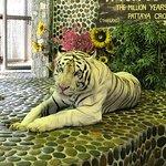 Foto di Parco della pietra da un milione di anni e fattoria dei coccodrilli Pattaya