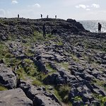 Photo of Burren Wild Tours