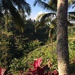 Photo of Bali On Bike