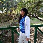 صورة فوتوغرافية لـ Chandigarh Rose Garden