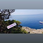 Blu Navy Cruise & Tour Foto