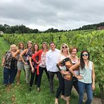Checking out the Vines !