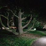 Billede af Tissington Hall