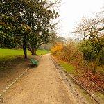Photo of Parc Montsouris