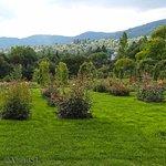 Photo of Rosengarten auf dem Beutig