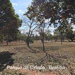 Zdjęcie Parque da Cidade Dona Sarah Kubitschek