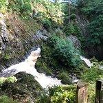 Foto de Conwy Falls