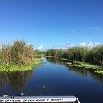 Foto Gator Bait Airboat Adventures