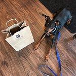 صورة فوتوغرافية لـ WaggMore Pet Boutique & Bakery Dog Friendly