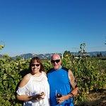 Foto de Marchesi Vineyards