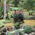 Fotografia de Harmony Trail Azores