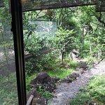 緑多い楽寿園側の景色
