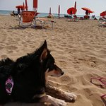 Photo de La spiaggia di Pluto