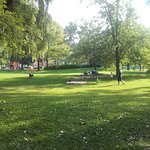 صورة فوتوغرافية لـ Jack Darling Memorial Park