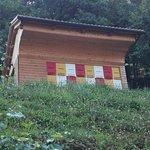 Casa delle api