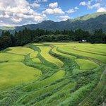 Rice terrace, Mt.Ue照片