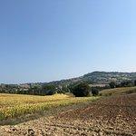 Photo of La Giuggiola Agriturismo