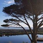 Photo de Cape Point Vineyards
