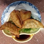 an order of potstickers