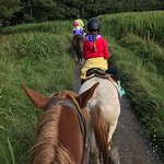 Killarney Riding Stables Foto