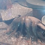 Bild från Cape Town Fish Market