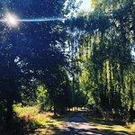 Central Park walk, Chelmsford