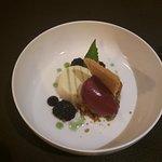 Panna cotta – citroen – braam – rabarber – vlier