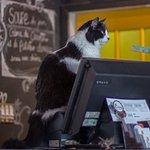 Unfair cashier