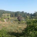 Photo of Il Parco  di Cavriglia