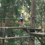 Action Forest Kletterwald Foto