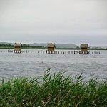 Foto de Lake Ogawara