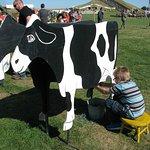 Foto de Ramseyer Farms