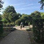 Photo of Freizeitpark Rheinaue