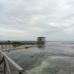Bilde fra Cloud 9 Surfing Tower