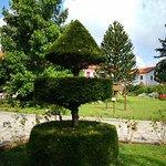 Ảnh về Parco di Villa Vittoria