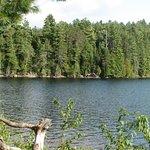 Lake Opeongo Foto