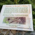 Morgan's Mango의 사진