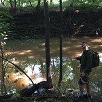 Zdjęcie Armory Canal Trail