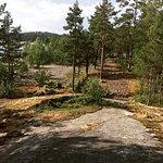 Photo de Koionsaari Island