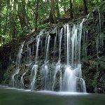 Foto de Chisuji Falls