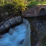 Cascada lateral del Arroyuelo