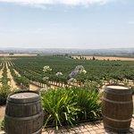 Bild från Wine Wrangler - Day Tours