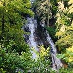 Connestee Falls Picture