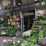 Flower Shop in Tours, France